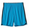 Patagonia Mens Strider Shorts 7in Larimar Blue (Spring 2013)