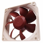 Noctua NF-R8 80mm Fan