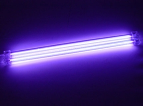 12in Dual Purple Cold Cathode Kit