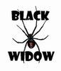 """Black Widow"" Cam & Springs Kit"