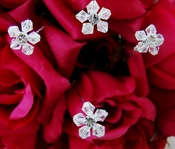 Crystal Flower Bouquet Jewelry (set of 6)
