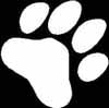 2 10 inch DOG PAW stickers