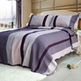 [Purple Charm] 100% Cotton 3PC Floral Vermicelli-Quilted Patchwork Quilt Set (Full/Queen Size)