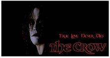The Crow Pillow Case True Love Never Dies