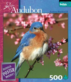 Eastern Bluebird II Audubon Birds 500 Piece Puzzle