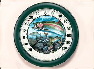 "12"" Rainbow Thermometer Jon Q. Wright"