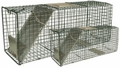 "Intruder 24210  Relocator Live Trap - Combo Value Pack (Set of two) Spring Loaded Door 24"" x 8"" x 8"" and 32"" x 10"" x 10"""