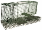 "Intruder 24220  Relocator Live Trap - Folding Space Saver Trap with Bayonet Latch & Rear Door 32 "" x 10"" x 12"""