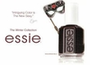 Essie Winter 2010 Collection
