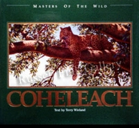 "<font color=""#808080"">COHELEACH:  MASTERS OF THE WILD- Guy Coheleach</font><font color=""#ffffff"">"