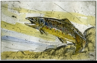 "CROSSMAN:  BROWN TROUT<font color=""#ffffff"">"