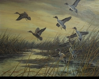 "ADAMSON:  PINTAILS AT DAWN</a><br><font color=""#ffffff""><b>- SOLD</b></font>"