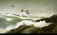 LOGÉ:  ROCKY COAST - GOLDENEYES</a><br><b>- SOLD</b>