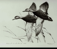 "<font color=""#808080"">7 -- 1940 -- Jaques -- Black Ducks</font>"