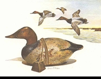 "<font color=""#808080"">42 -- 1975 -- Fisher -- Canvasback  Decoy</font>"