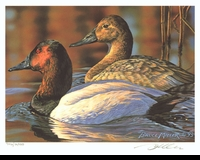 "<font color=""#808080"">60 -- 1993 -- Miller -- Canvasbacks</font>"