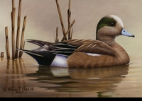 77 -- 2010 -- Bealle -- Widgeon