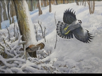 HINES:  GOSHAWK AND GROUSE</a><br>- SOLD</b>