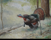 HINES:  TURKEY GOBBLE</a><br><b>- SOLD</b>