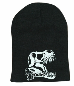 Skeleton Head Beanie