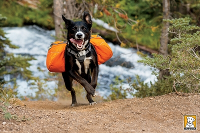Approach Pack Dog Backpack
