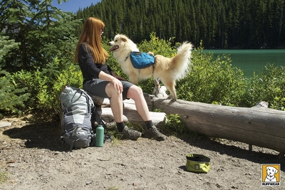 Ruffwear Approach Pack Dog Backpack