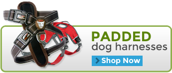 Padded Dog Harnesses