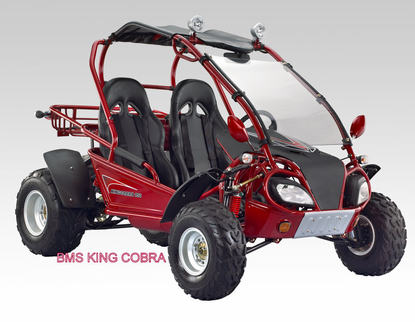 BMS King Cobra 150cc Ultra Go Kart / Dune Buggy - <h2>California Legal Model<h/2> Compare to Carter Talon DLX -