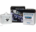 WPS MOTORCYCLE BATTERY-YAMAHA-125 CC MODELS - Street - Lowest Price Guaranteed! FREE SHIPPING !