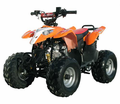 "Coolster 3050B Atv/Quad- Oversize 16"" Tires. 110CC ATV - FREE Mx Riding Gloves! New Low Shipping Price $59!*. Calif Legal - <h3>Larger Mid Size Youth  Model</h3>"