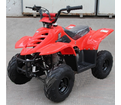 Rocket 110cc Kids ATV  Lowest Price! Automatic, Speed Limiter Control, Remote Engine Kill, Best Price Guaranteed - Ships as low as $59