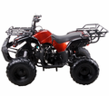 COOLSTER/ Tao 125cc ATV Youth, CVT Transmission with Reverse.   Lowest Price Guaranteed! <h3>Top Seller</h3>