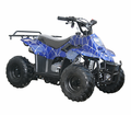 COOLSTER  XS 110cc Youth Quad/ATV   CALIF LEGAL!<h3>with Custom Spider-Web Graphics!</h3>