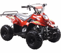 Coolster / Tao XR 110cc Youth Quad/ATV with Rack! . Fully Automatic! CALIF LEGAL!