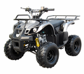 Coolster / Tao XL 125cc  Deluxe Sport/Utility Quad