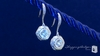 Sterling Silver Diamond Cubic Zirconia Earrings - Free Shipping ShoppingBadger.com
