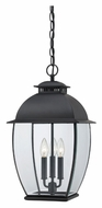 Quoizel BAN1911K Bain Mystic Black 3 Lamp Outdoor Hanging Light - 11 Inch Diameter