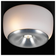 Nelly 12  Modern Style Flush-Mount Ceiling Lighting