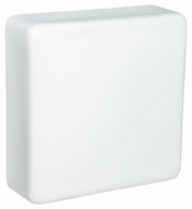 Besa 888407C Geo Small Square Flush Mount Bathroom Ceiling Light