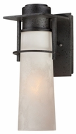 Quoizel DRE8405IR Drew Iron Finish Transitional Small Wall Mounted Lamp