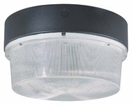 Nuvo 65014 Metal Halide 15 Inch Diameter Architectural Bronze Outdoor Lighting Fixture