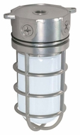 Nuvo 76624 Industrial Style Surface Mount 9 Inch Tall Metallic Silver Outdoor Overhead Lighting