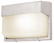 Access 20334 Neptune Contemporary 1 Light 10.5 inches wide Outdoor Wall Fixture