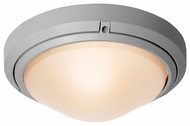 Access 20355 Oceanus Outdoor Wall or Ceiling Fixture - 60 watts
