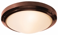 Access 20356 Oceanus Outdoor Wall or Ceiling Fixture - 120 watts