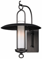 Troy B3332 Carmel Medium Transitional 13 Inch Diameter Graphite Exterior Wall Lamp