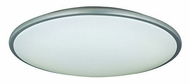 Lite Source LS5412 Pegeen Contemporary 21  Ceiling Lamp