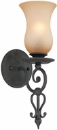 Troy B1301FI Portobello 1 Light Amber and French Iron Wall Sconce Lighting Fixture