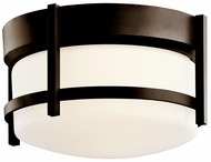 Kichler 49125OZ Coturri Small Outdoor Ceiling Light