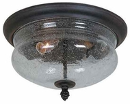 Artcraft AC8246 Premiere Traditional Style Outdoor Flush-Mount Ceiling Light